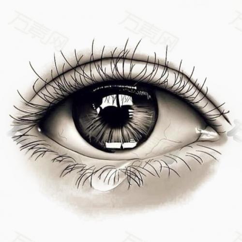 预防眼睛损坏,蓝莓复合膳食OEM贴牌加工