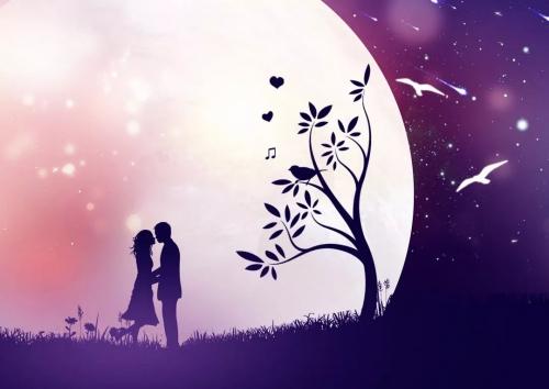 七夕:与你白头偕老,情人节:我爱你